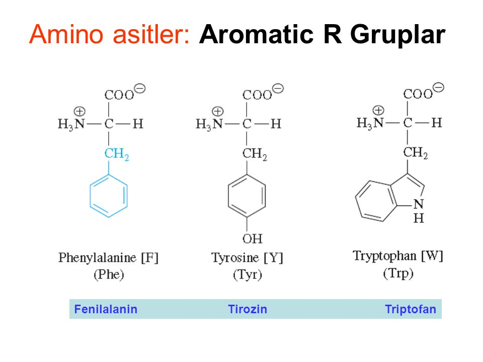 Amino asitler: Aromatic R Gruplar