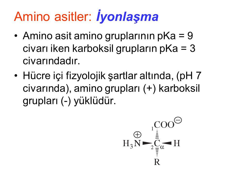 Amino asitler: İyonlaşma