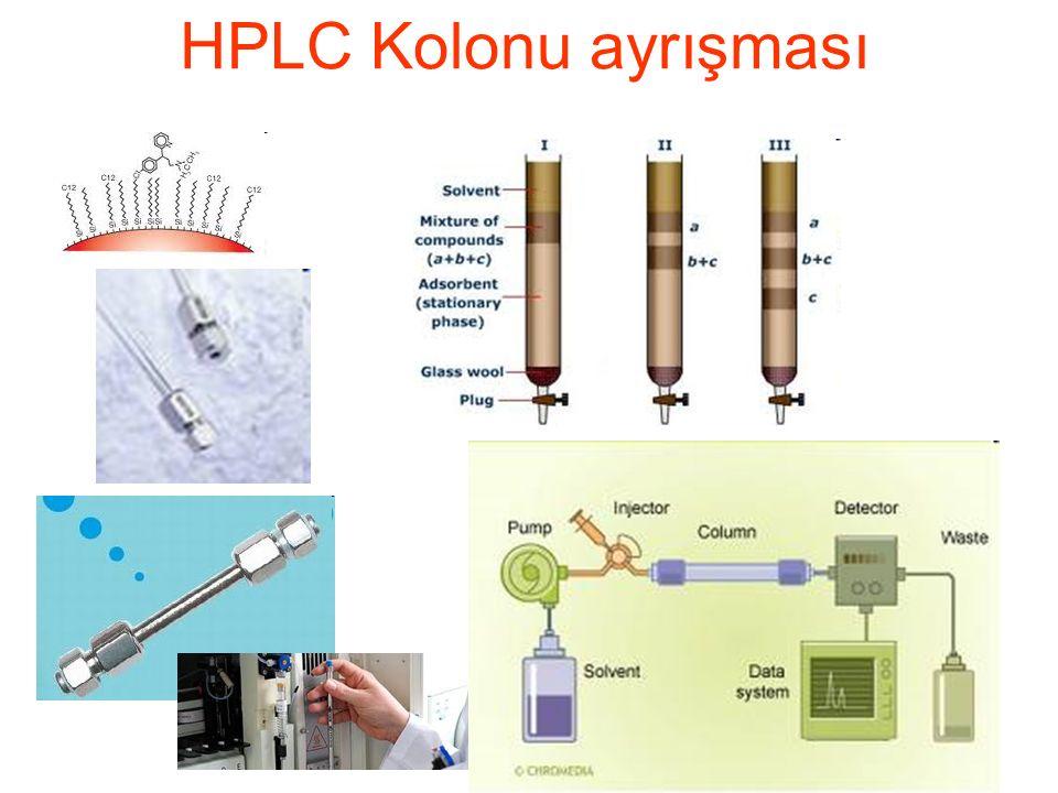 HPLC Kolonu ayrışması