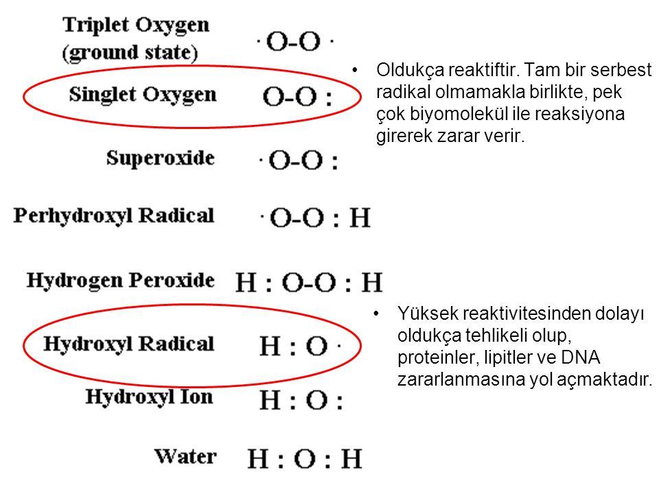 Oldukça reaktiftir. Tam bir serbest radikal olmamakla birlikte, pek çok biyomolekül ile reaksiyona girerek zarar verir.