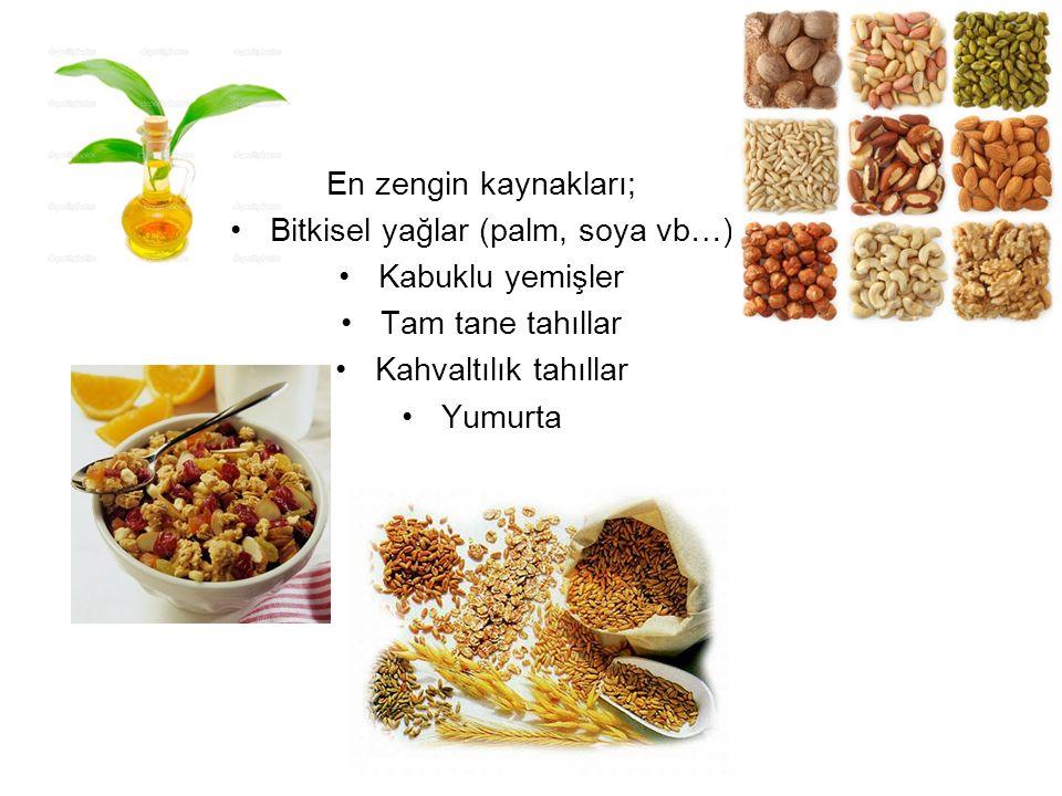 Bitkisel yağlar (palm, soya vb…)