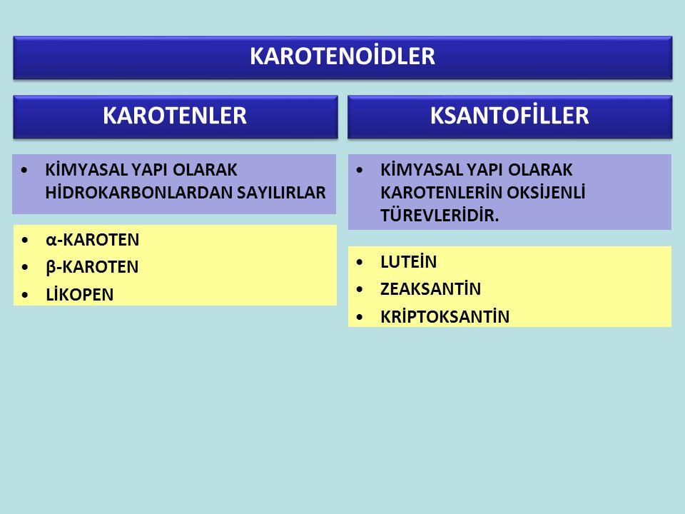 KAROTENOİDLER KAROTENLER KSANTOFİLLER