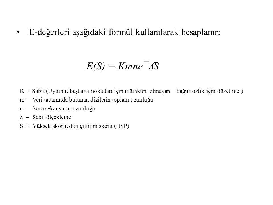 E(S) = Kmne¯ʎS E-değerleri aşağıdaki formül kullanılarak hesaplanır:
