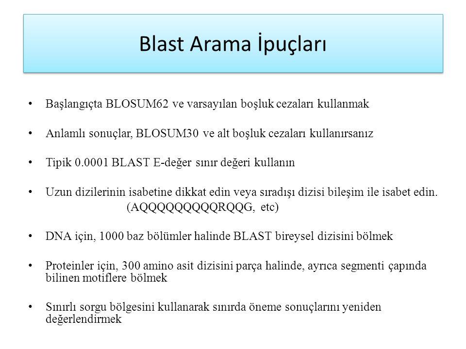 Blast Arama İpuçları Başlangıçta BLOSUM62 ve varsayılan boşluk cezaları kullanmak. Anlamlı sonuçlar, BLOSUM30 ve alt boşluk cezaları kullanırsanız.