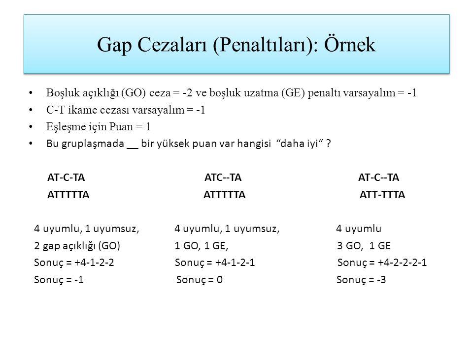 Gap Cezaları (Penaltıları): Örnek