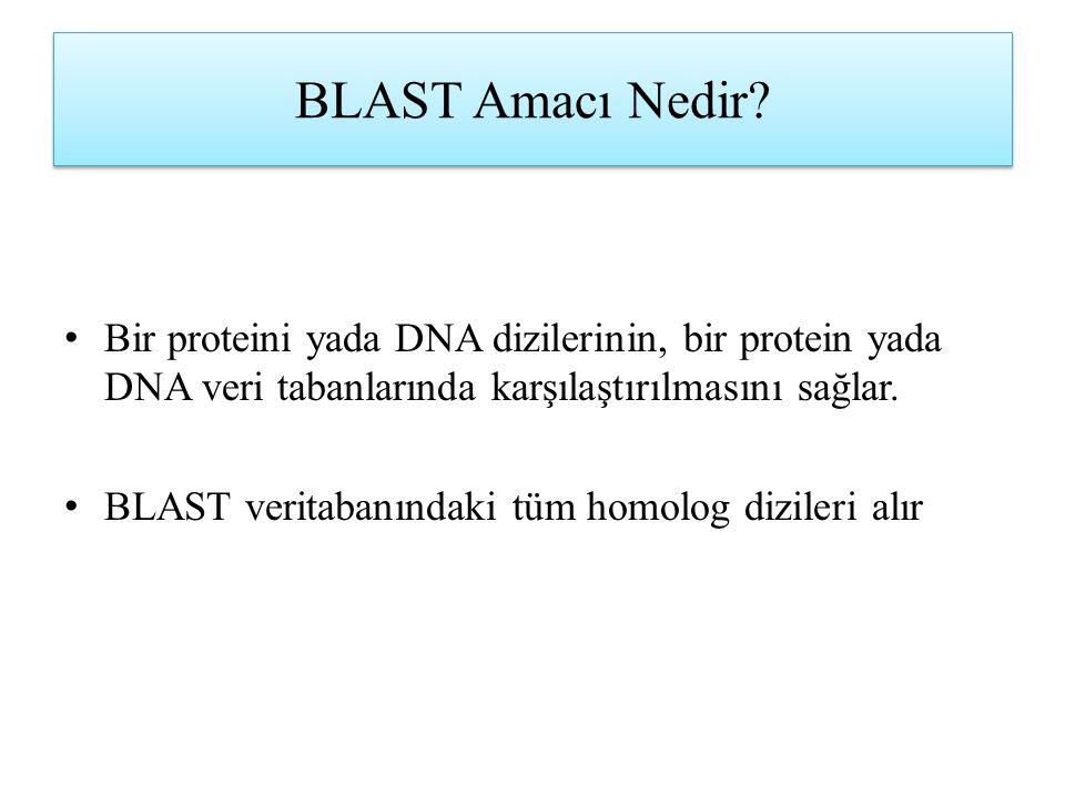 BLAST Amacı Nedir Bir proteini yada DNA dizilerinin, bir protein yada DNA veri tabanlarında karşılaştırılmasını sağlar.