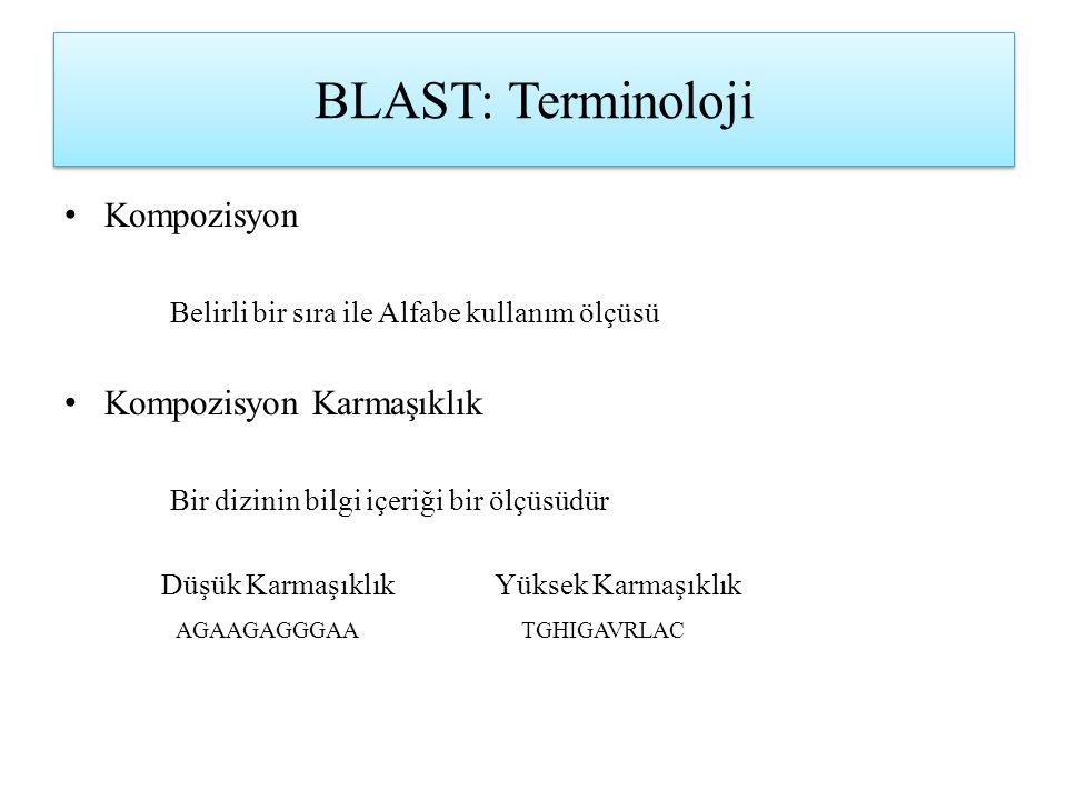BLAST: Terminoloji Kompozisyon Kompozisyon Karmaşıklık