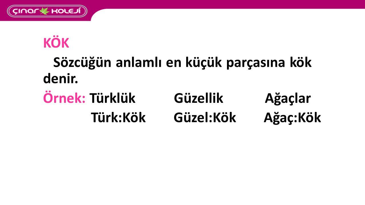 KÖK Sözcüğün anlamlı en küçük parçasına kök denir. Örnek: Türklük Güzellik Ağaçlar.