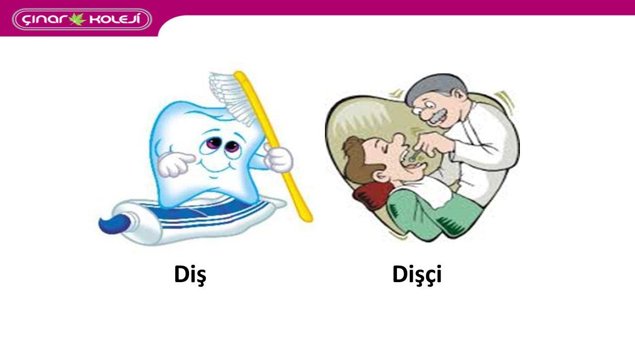 Diş Dişçi