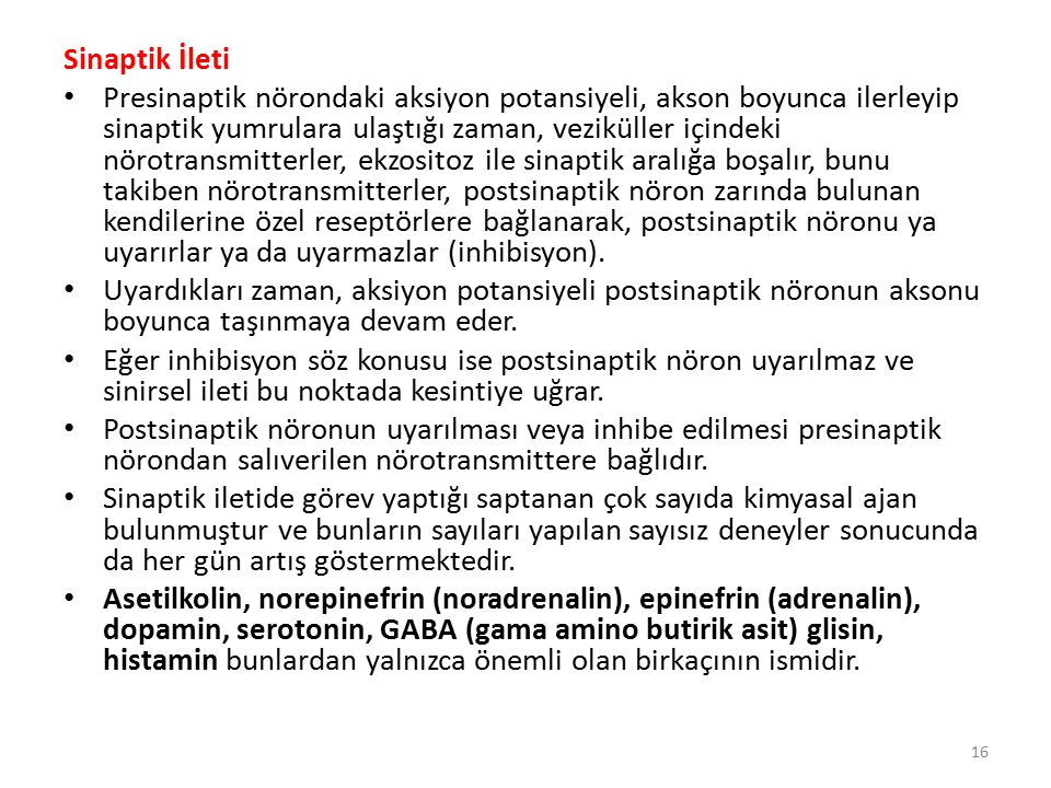 Sinaptik İleti