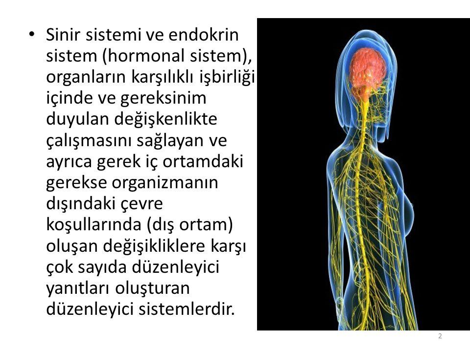 Sinir sistemi ve endokrin sistem (hormonal sistem), organların karşılıklı işbirliği içinde ve gereksinim duyulan değişkenlikte çalışmasını sağlayan ve ayrıca gerek iç ortamdaki gerekse organizmanın dışındaki çevre koşullarında (dış ortam) oluşan değişikliklere karşı çok sayıda düzenleyici yanıtları oluşturan düzenleyici sistemlerdir.