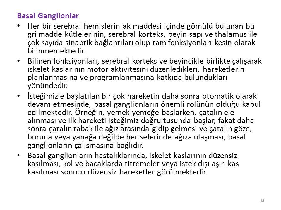 Basal Ganglionlar