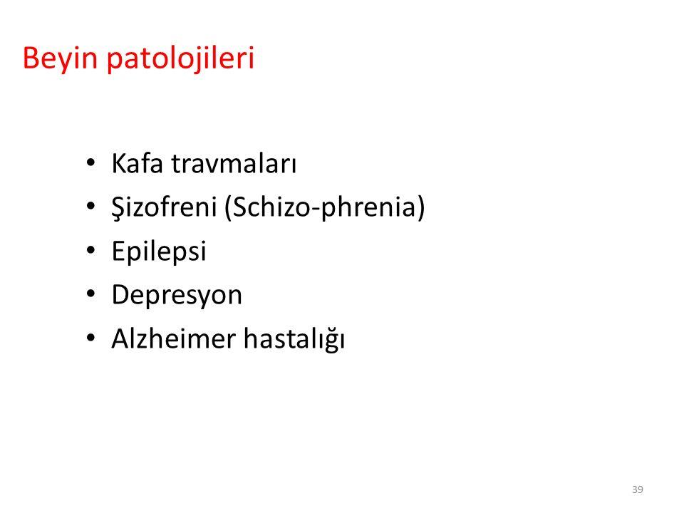 Beyin patolojileri Kafa travmaları Şizofreni (Schizo-phrenia) Epilepsi