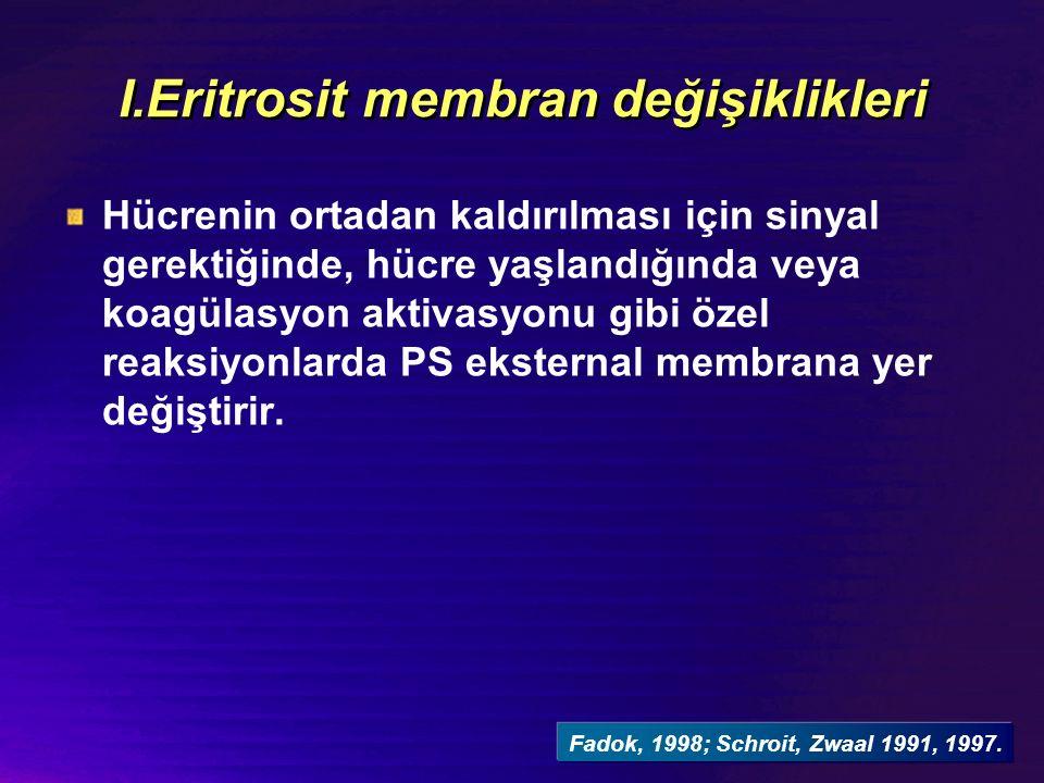 I.Eritrosit membran değişiklikleri