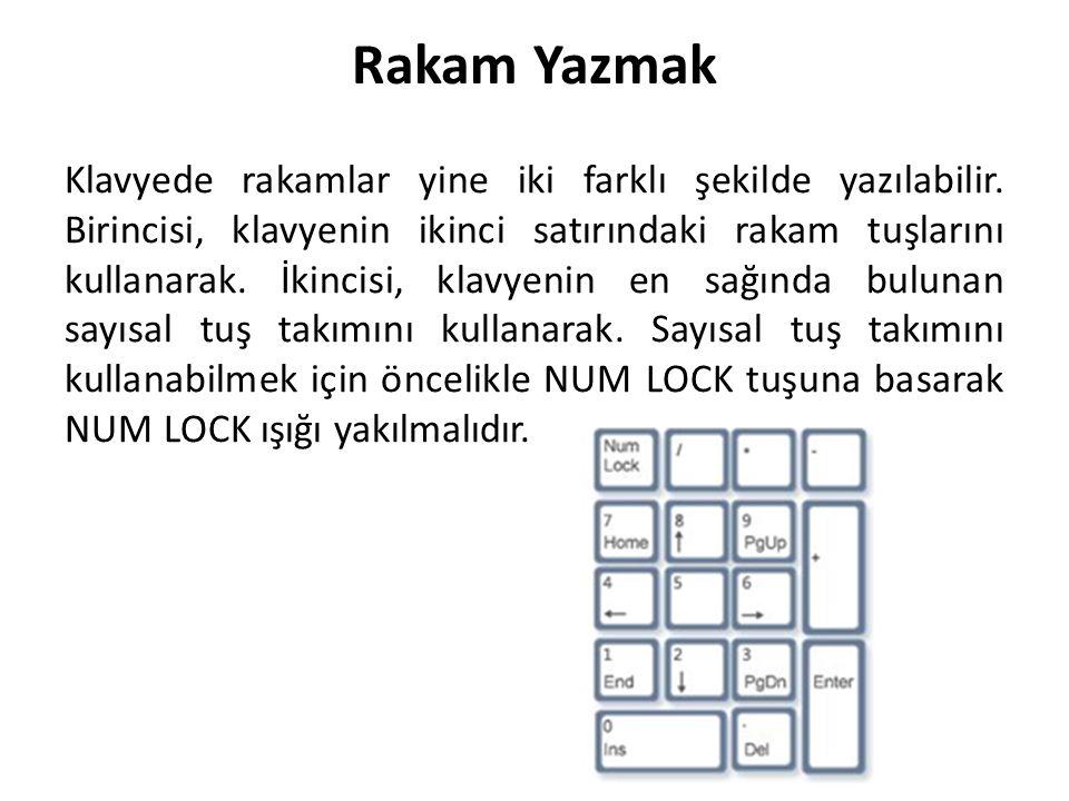 Rakam Yazmak