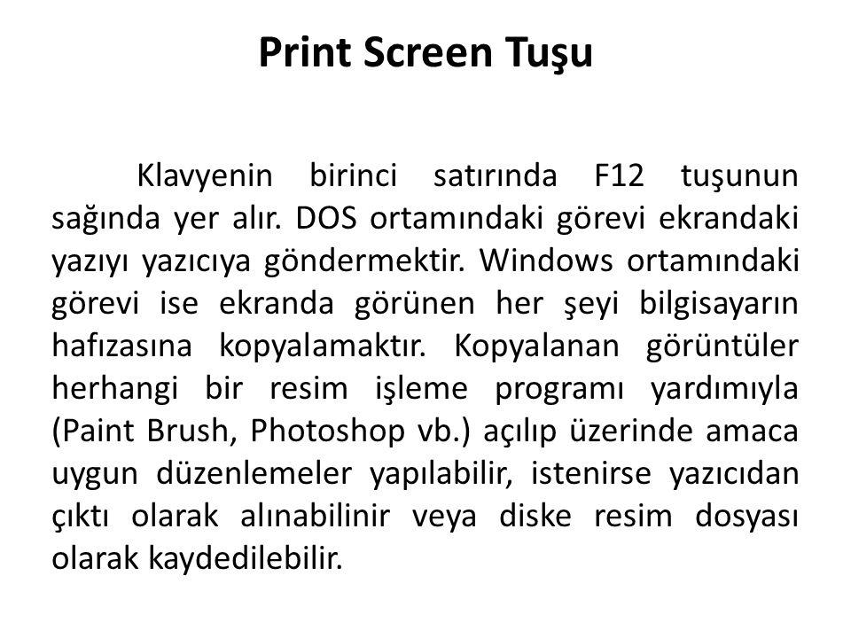 Print Screen Tuşu