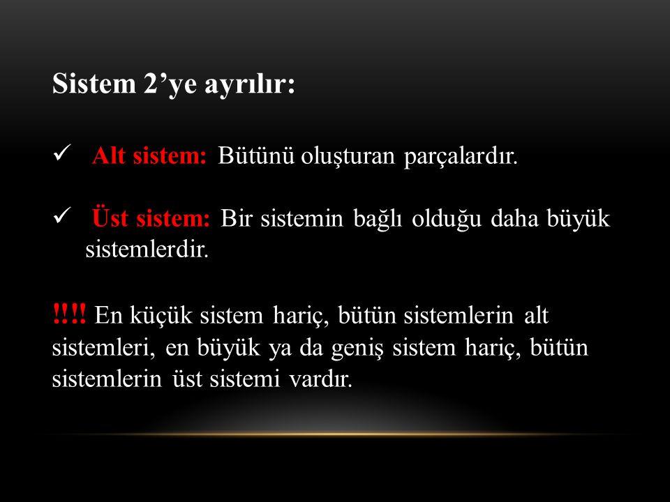 Sistem 2'ye ayrılır: Alt sistem: Bütünü oluşturan parçalardır. Üst sistem: Bir sistemin bağlı olduğu daha büyük sistemlerdir.