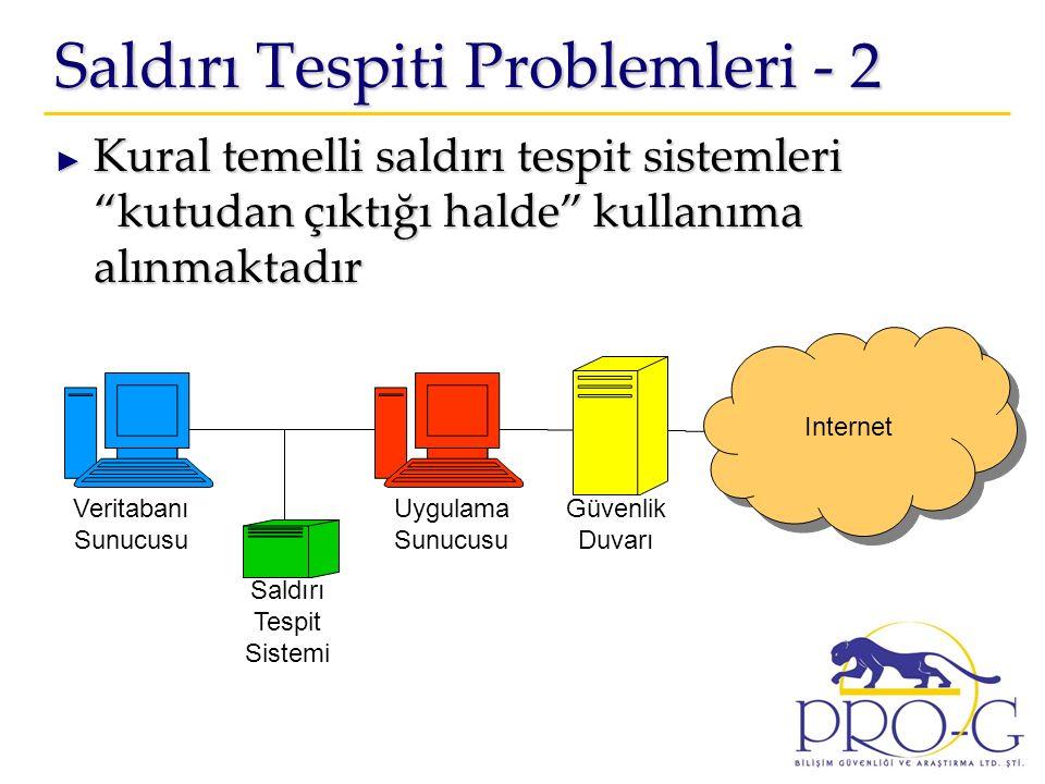 Saldırı Tespiti Problemleri - 2