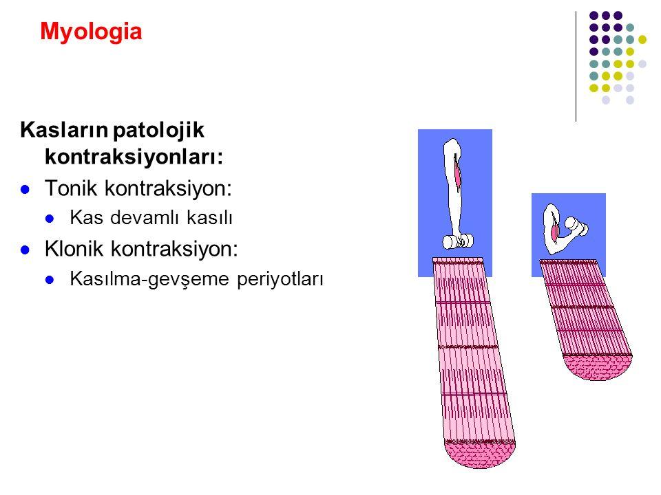 Myologia Kasların patolojik kontraksiyonları: Tonik kontraksiyon: