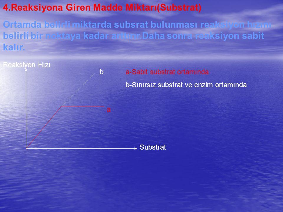 4.Reaksiyona Giren Madde Miktarı(Substrat)