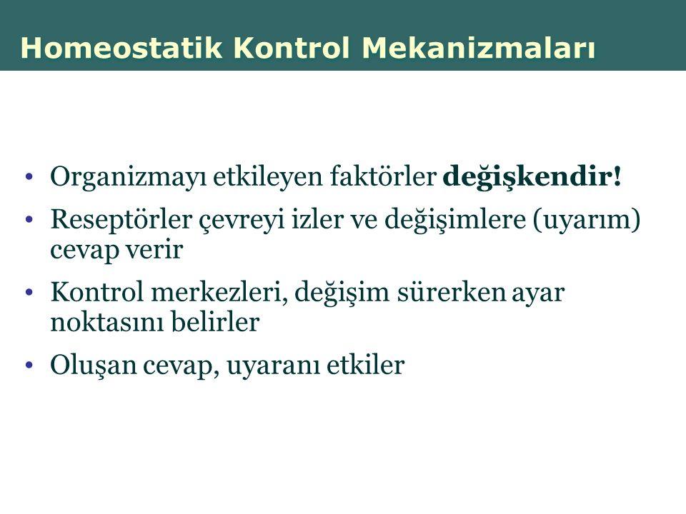 Homeostatik Kontrol Mekanizmaları