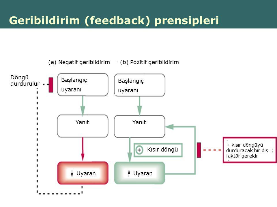 Geribildirim (feedback) prensipleri