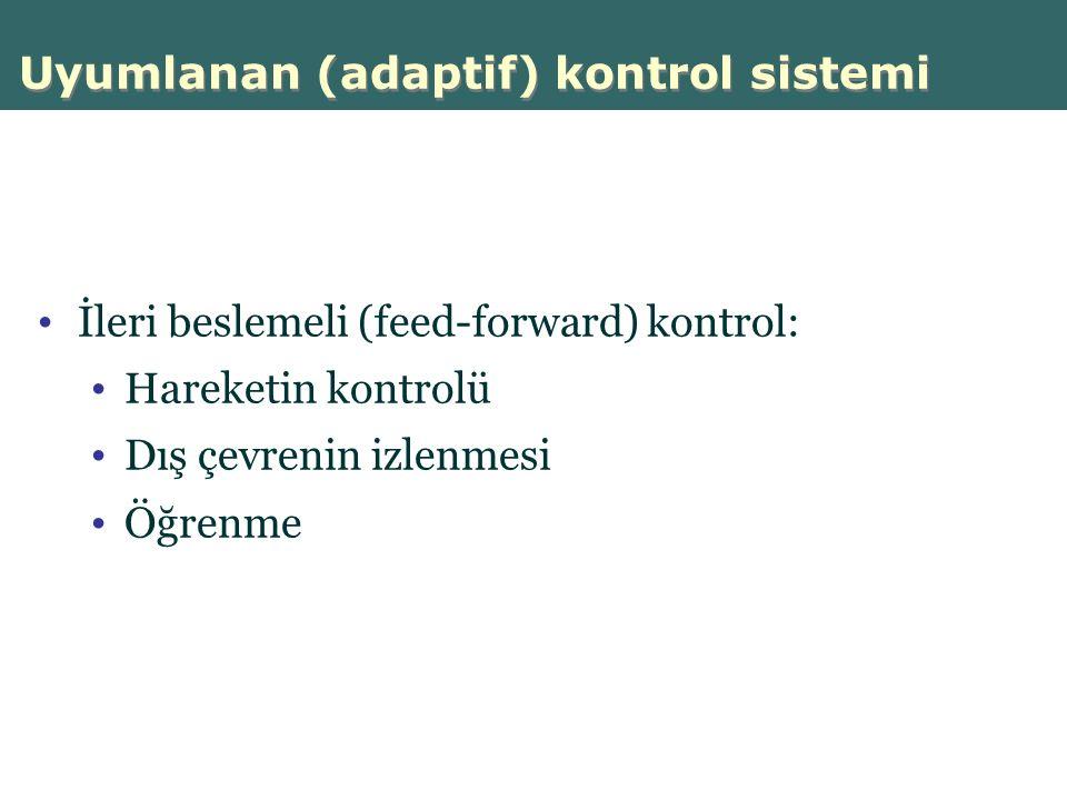Uyumlanan (adaptif) kontrol sistemi