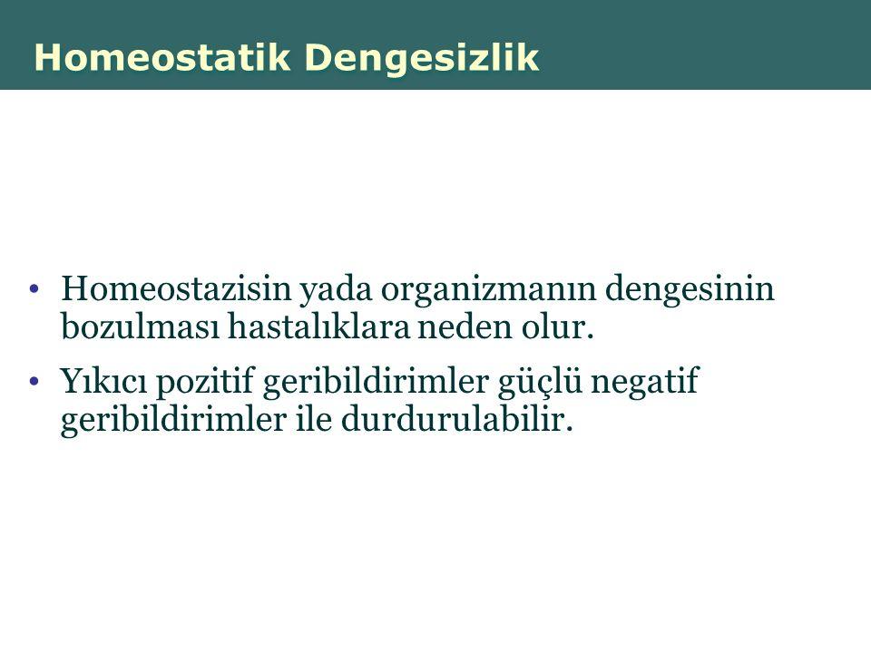 Homeostatik Dengesizlik