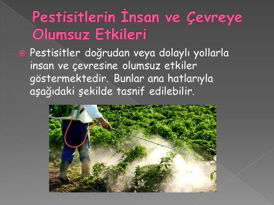 Pestisitlerin İnsan ve Çevreye Olumsuz Etkileri