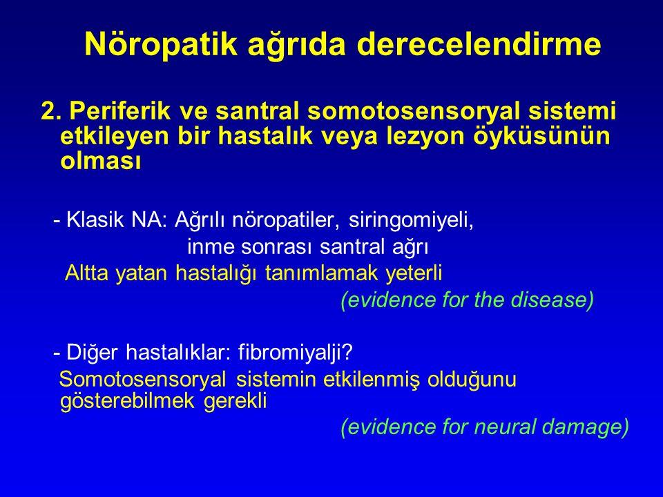 Nöropatik ağrıda derecelendirme