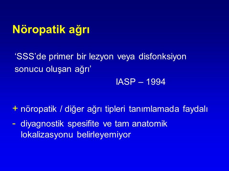 Nöropatik ağrı + nöropatik / diğer ağrı tipleri tanımlamada faydalı