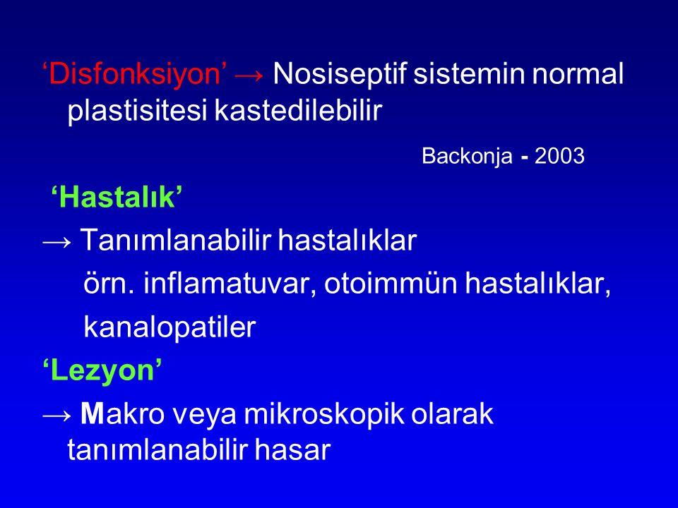 'Disfonksiyon' → Nosiseptif sistemin normal plastisitesi kastedilebilir