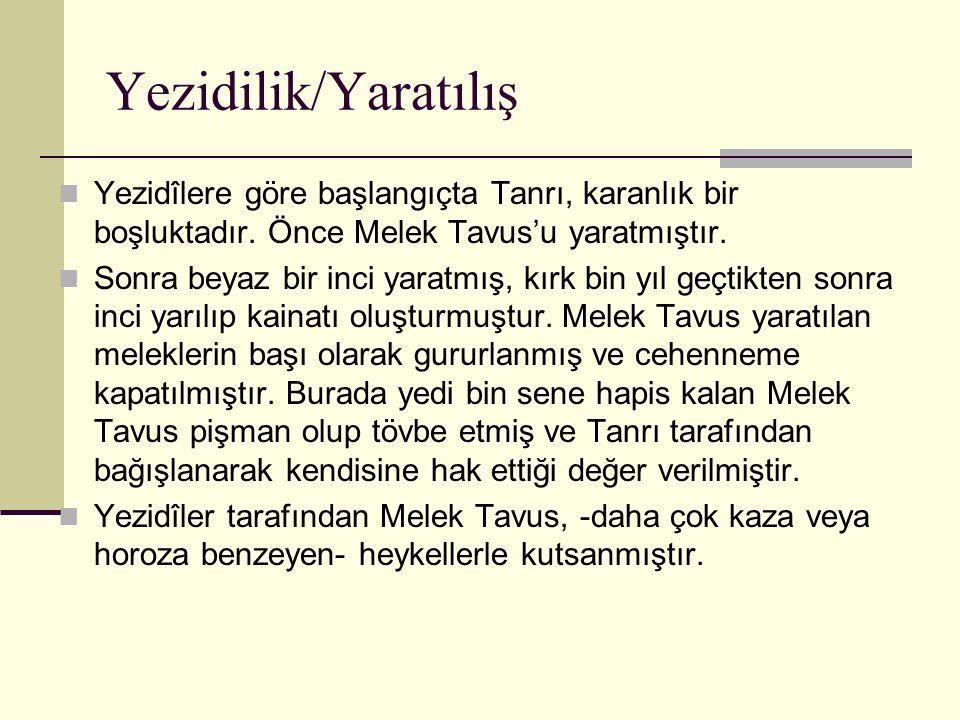 Yezidilik/Yaratılış Yezidîlere göre başlangıçta Tanrı, karanlık bir boşluktadır. Önce Melek Tavus'u yaratmıştır.