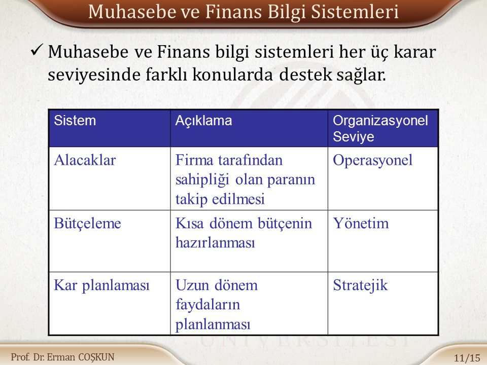 Muhasebe ve Finans Bilgi Sistemleri