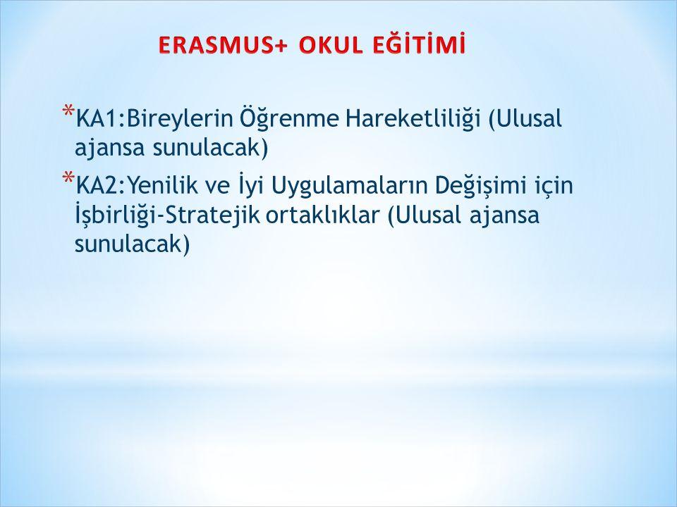 ERASMUS+ OKUL EĞİTİMİ KA1:Bireylerin Öğrenme Hareketliliği (Ulusal ajansa sunulacak)