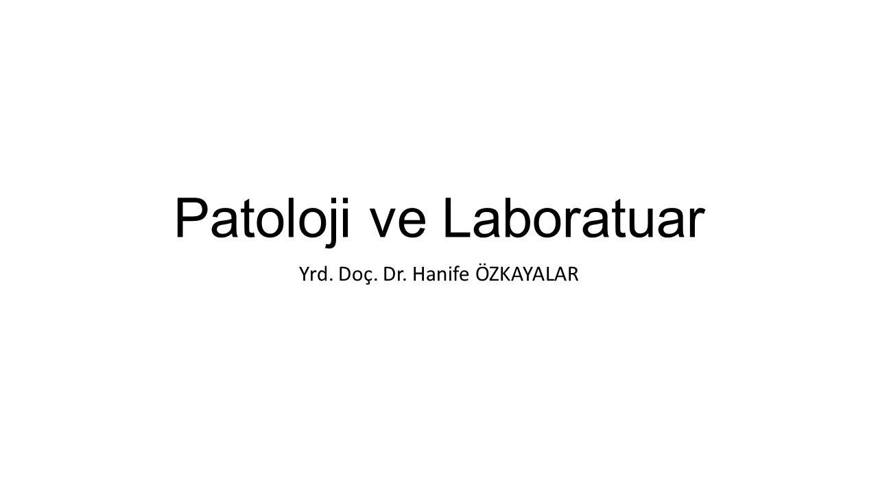 Patoloji ve Laboratuar