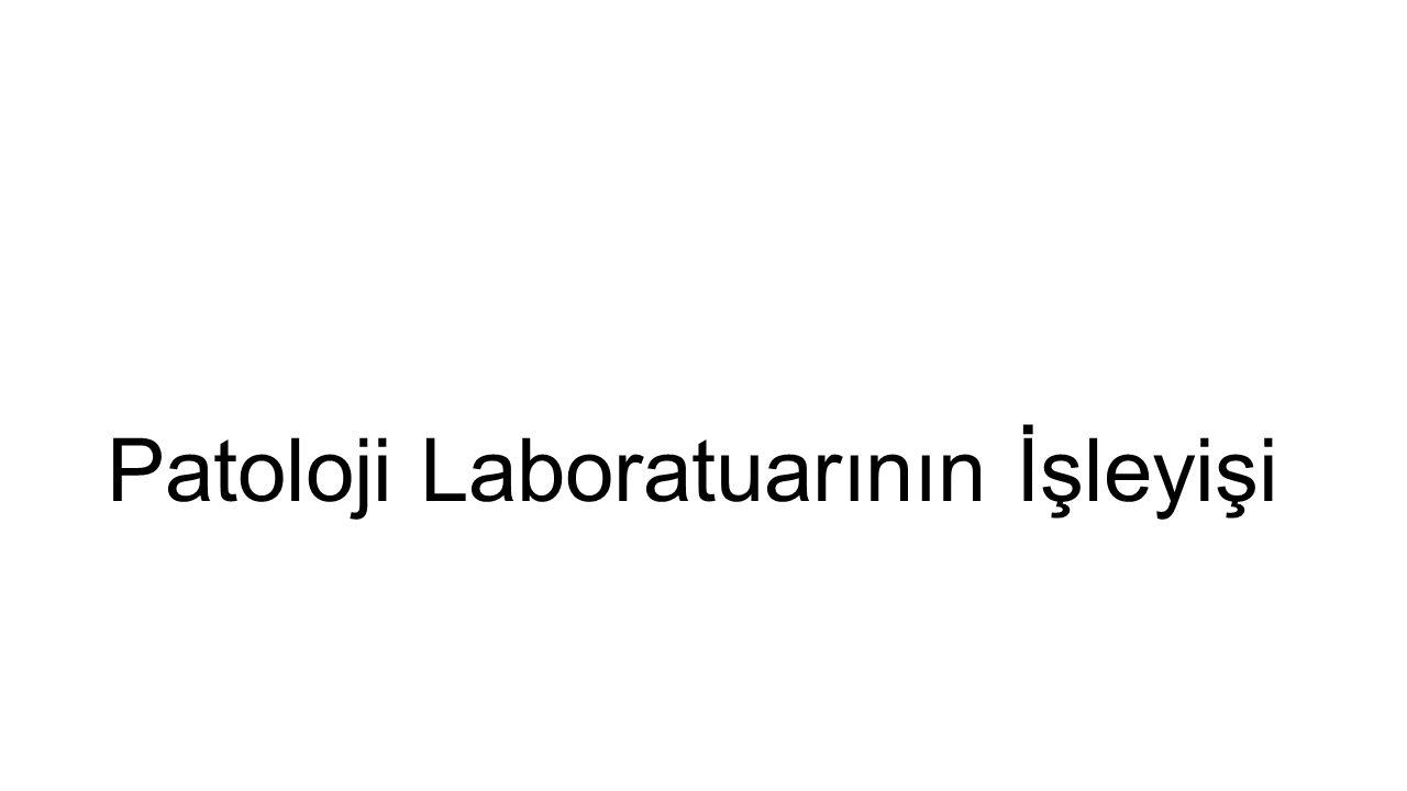 Patoloji Laboratuarının İşleyişi
