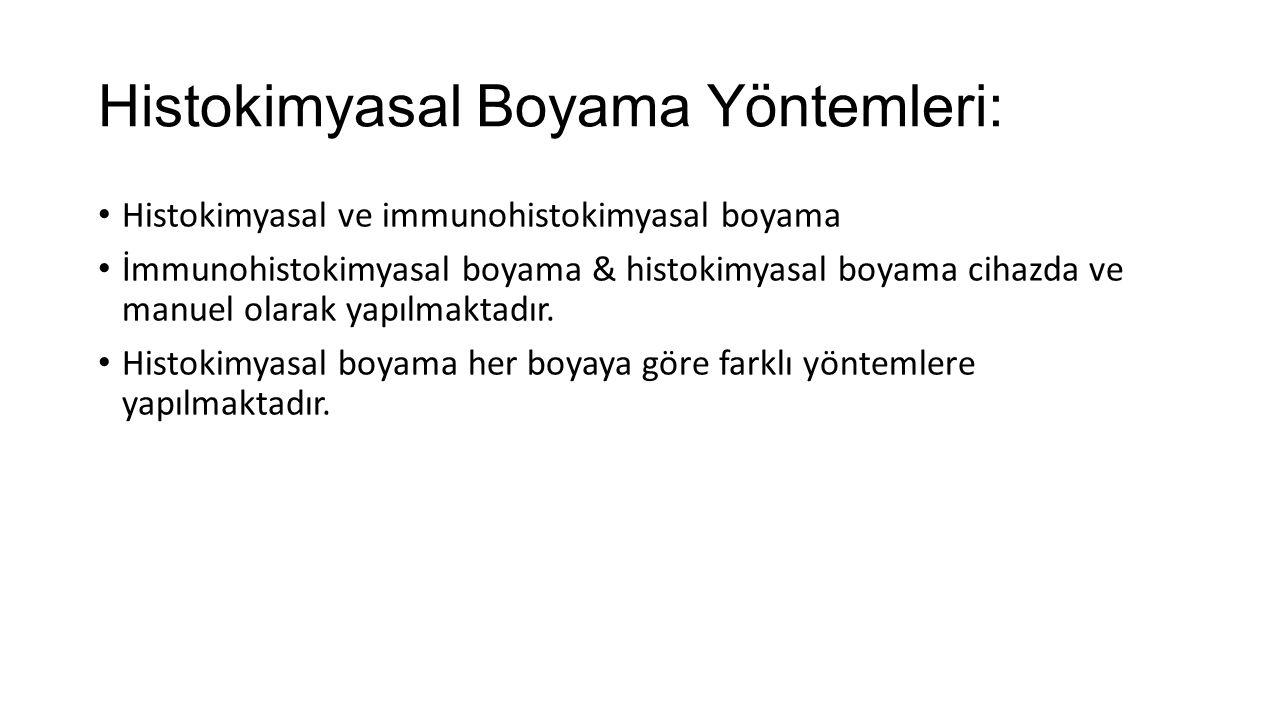 Histokimyasal Boyama Yöntemleri: