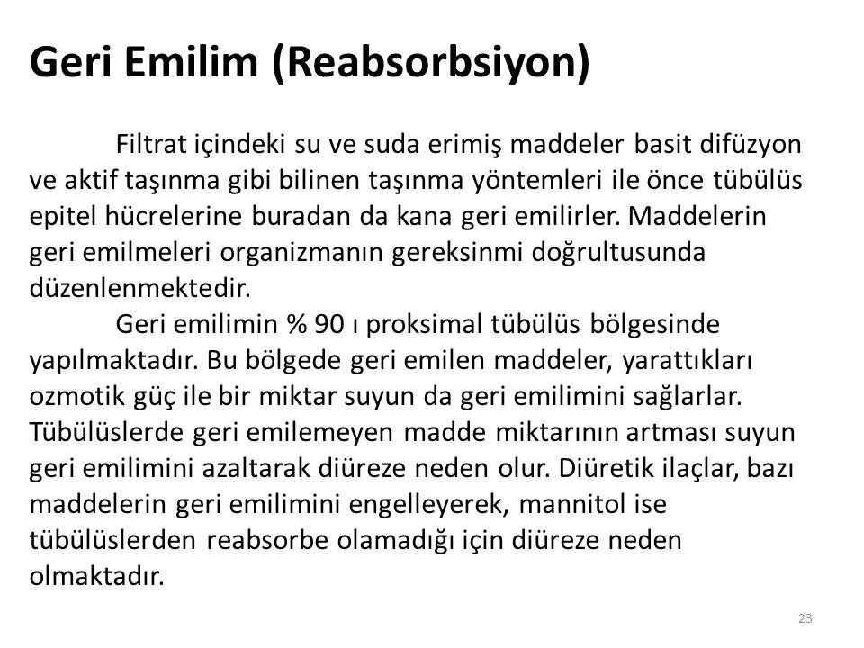 Geri Emilim (Reabsorbsiyon)