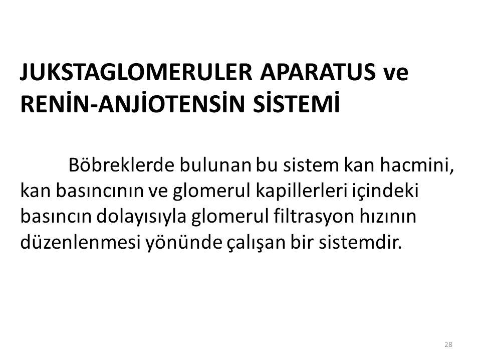 JUKSTAGLOMERULER APARATUS ve RENİN-ANJİOTENSİN SİSTEMİ