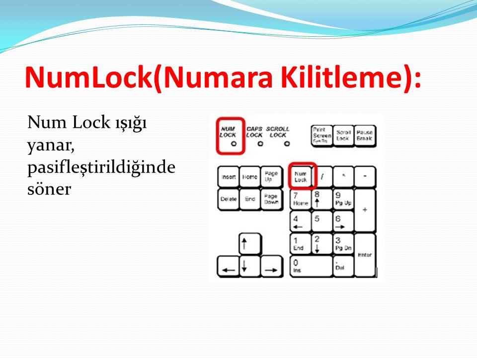 NumLock(Numara Kilitleme):