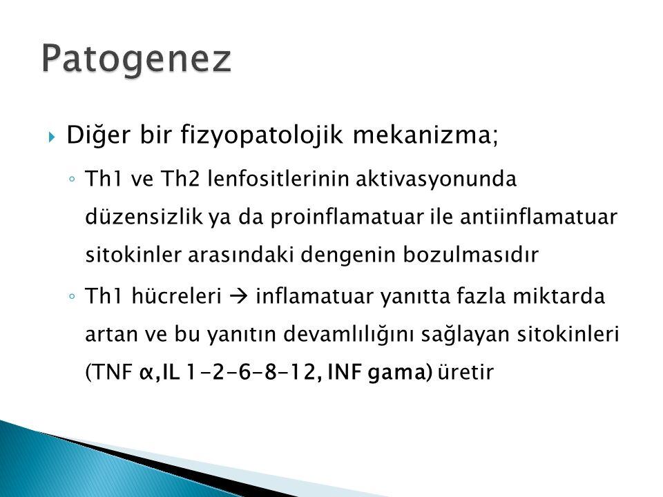 Patogenez Diğer bir fizyopatolojik mekanizma;