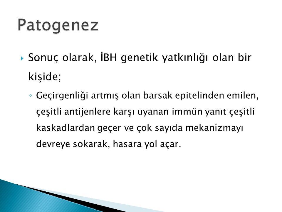 Patogenez Sonuç olarak, İBH genetik yatkınlığı olan bir kişide;
