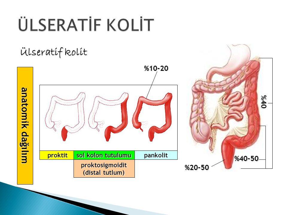 ÜLSERATİF KOLİT Ülseratif kolit anatomik dağılım %10-20 %40 %40-50