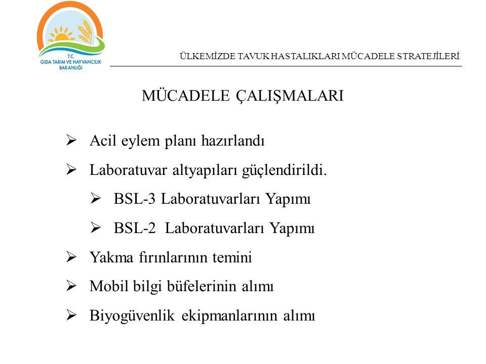 Acil eylem planı hazırlandı Laboratuvar altyapıları güçlendirildi.