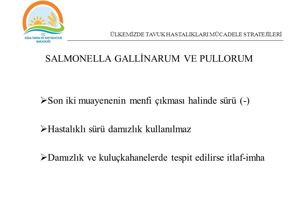 SALMONELLA GALLİNARUM VE PULLORUM