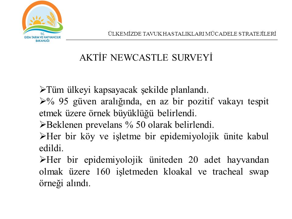 AKTİF NEWCASTLE SURVEYİ