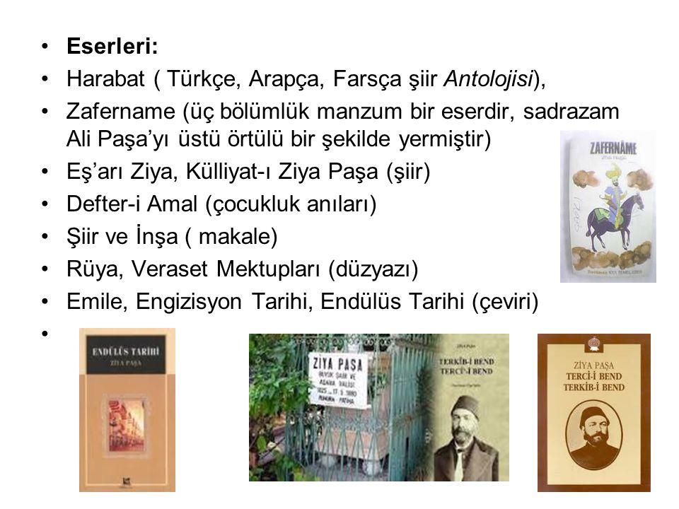 Eserleri: Harabat ( Türkçe, Arapça, Farsça şiir Antolojisi),