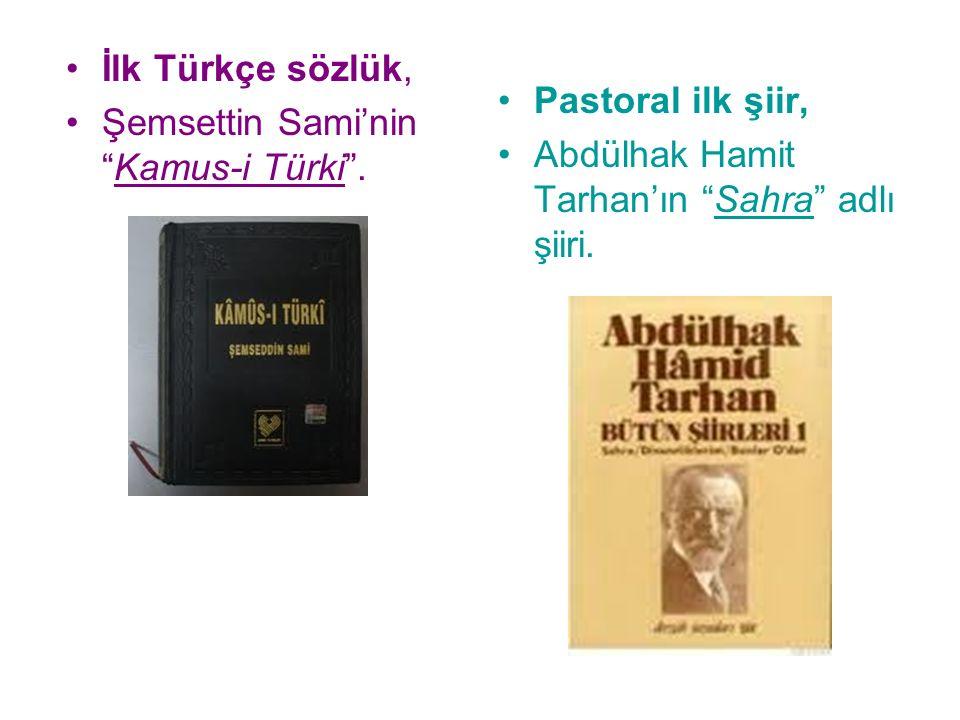 İlk Türkçe sözlük, Şemsettin Sami'nin Kamus-i Türki .