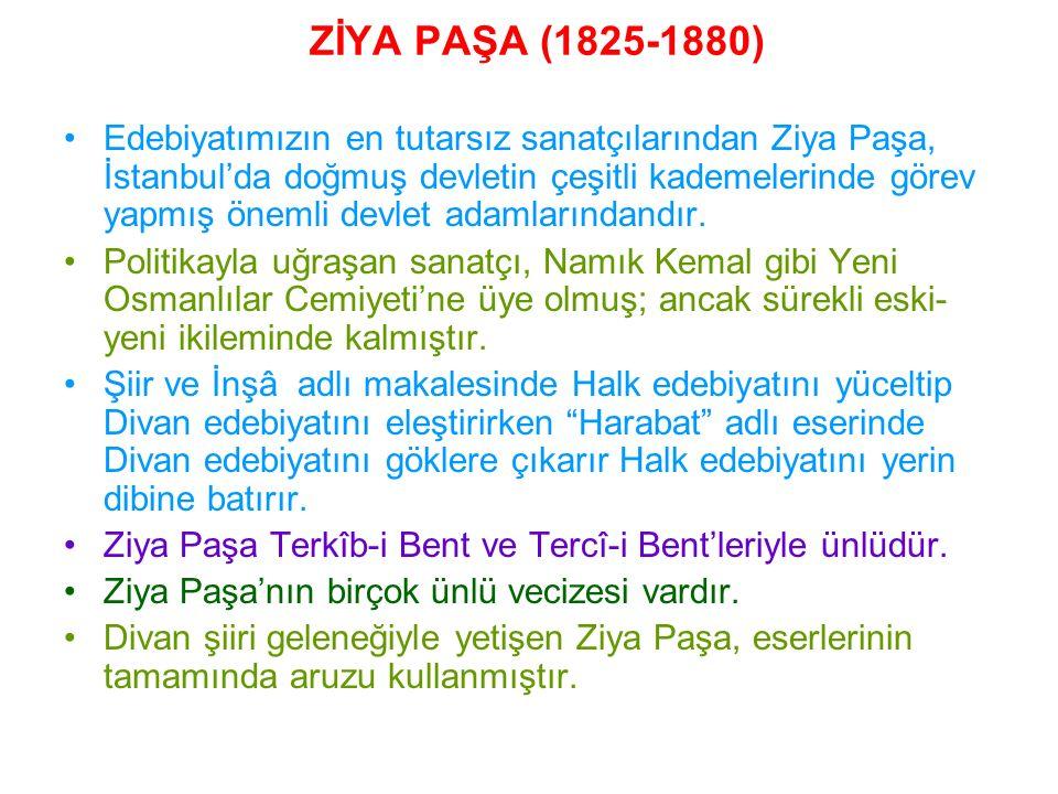 ZİYA PAŞA (1825-1880)
